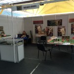 Tig Con and Wargames Romania